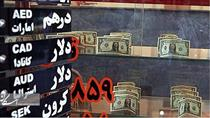 اموال گیرندگان ارز دولتی بررسی شود