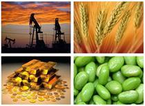 عرضه ۴۵ هزار تن فرآورده های نفتی و پتروشیمی در بورس کالای ایران
