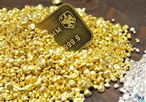 رقابت طلا با نفت در کاهش قیمت