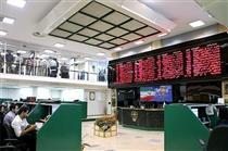 کوچکترین سهامدار بازار سرمایه/نوزاد یک روزه سهامدار شد