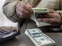 سفته بازان بازار ارز ضرر میکنند