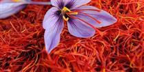 ۶۸ تن زعفران در بورس کالا عرضه شد