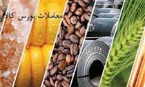 طرح قیمت تضمینی محصولات در بورس کالا، بار مالی دولت را کاهش می دهد