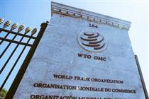 هشدار سازمان تجارت جهانی درباره خطر مسلم جنگ تجاری