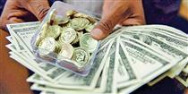 قیمت انواع سکه و ارز در بازار تهران/ دلار ۱۱۴۹۰ تومان