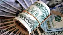 بازار ارز چگونه به آرامش رسید؟