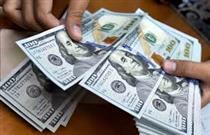 قیمت دلار  به ٢٣ هزار و ٩٥٠ تومان رسید