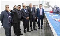 بازدید مدیرعامل بانک کشاورزی از طرح های مشارکتی در استان گلستان