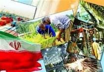افتتاح تعدادی از طرحهای اشتغالزایی روستایی مورد حمایت بانک سینا