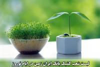 شعب کشیک بانک ایران زمین در نوروز