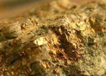 سهم ۲۲.۷ درصدی بخش معدن از بازار سرمایه
