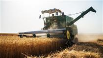 افزایش ۲۲ درصدی صادرات بخش کشاورزی
