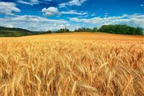 ارز آوری ۶.۴ میلیارد دلاری صادرات محصولات کشاورزی