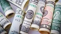 مقدمات راه اندازی بازار نقدی ارز در حال انجام است